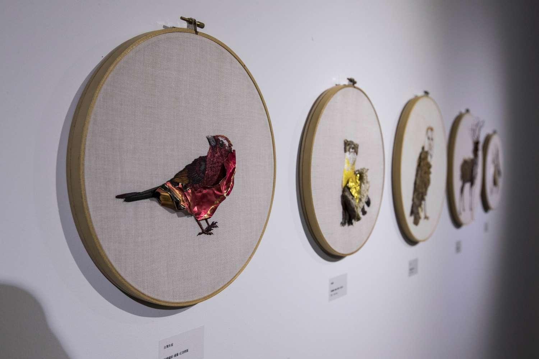 241藝術空間《動物研究室》特展即日起展出2